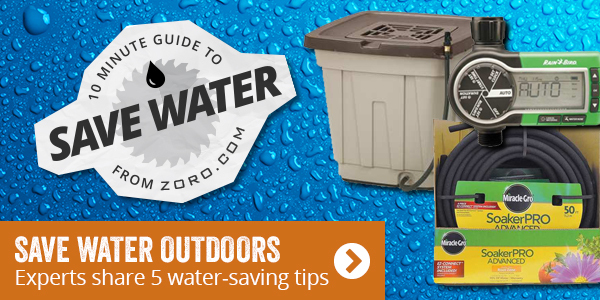 Save water outdoors. Experts share 5 water-saving-tips.