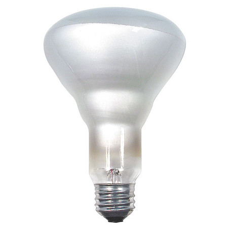Incandescent Floodlight, R30, 110W