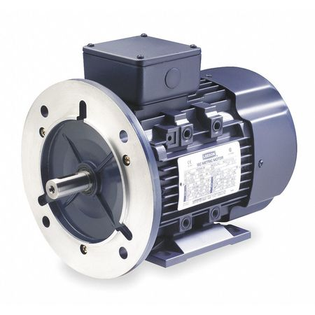 Premium Efficiency Metric Motor, D90LD