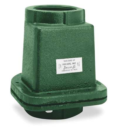 Full Flow Check Valve, Cast Iron, 2 In.