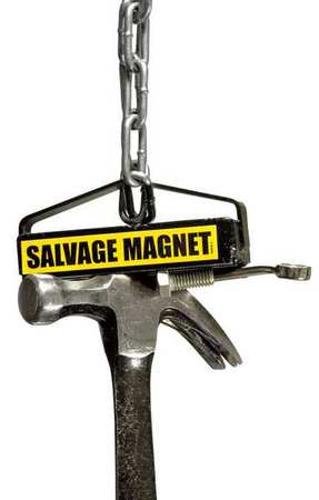 Salvage Magnet, 35 Lb Cap, 3.5 In Dia