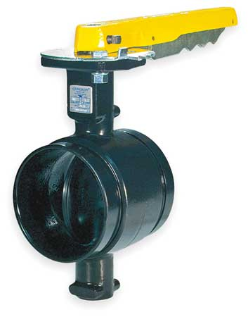 Butterfly Valve, Grooved, 2 1/2 In