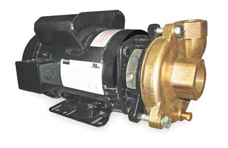 Bronze/Brass 3 HP Centrifugal Pump 230V