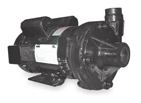 Cast Iron 2 HP Centrifugal Pump 115/230V