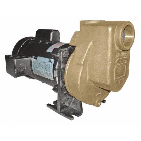 Pump, Centrifugal, Bronze, 1/3HP, 1 PH