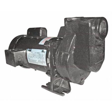 Pump,  Centrifugal,  CI,  1/2 HP, 1 PH