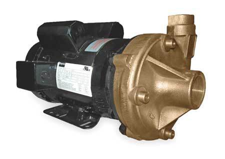 Bronze 3 HP Centrifugal Pump 230V