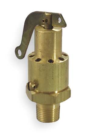 Safety Relief Valve, 1/4 In, 100 psi, Brass