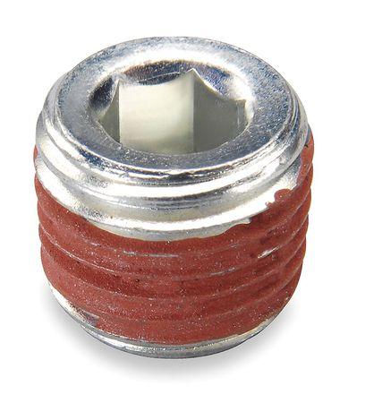 Pipe Plug, 1/4 in NPT, MDR11/MDR3, PK10