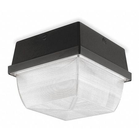 Fixture, Ceiling, 150 W