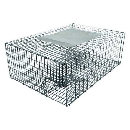 Cage Traps for Birds