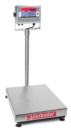 Digital Bench Scale, SS Pltfrm, 60 lb. Cap