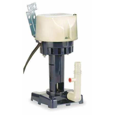Pump, Coolant, Plastic
