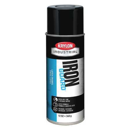 Spray Paint, Black, 12 oz.