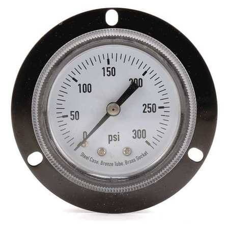 Panel Gauge,  Front Flange, 2 In, 300 psi