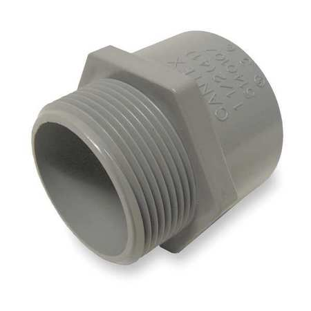 Male Adapter, 1-1/2 In Conduit, PVC