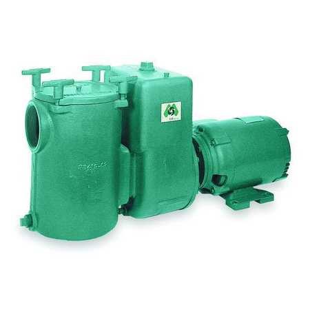 Pool Pump,  5 HP,  3 Ph,  200-230/460V