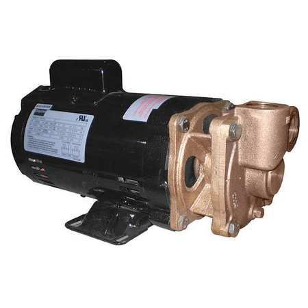 Turbine Pump,  3/4 HP,  1 Ph,  11.3/5.6 Amp