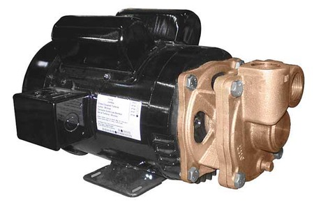 Turbine Pump, 1 1/2 HP, 1 Ph,  13.5/6.7 Amp