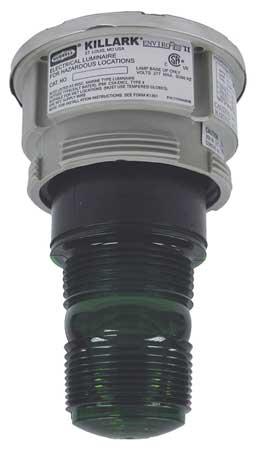 Hazardous Warning Light, Xenon, Green, 120V