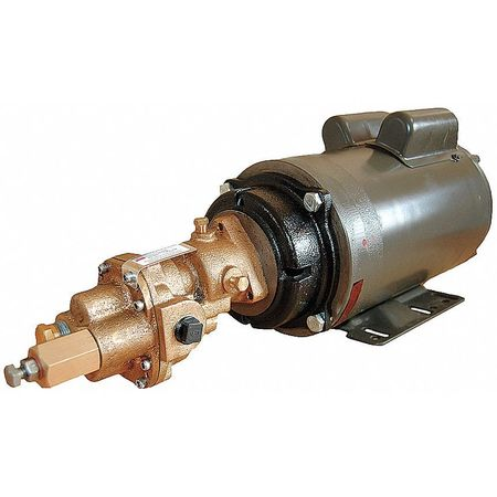 Rotary Gear Pump,  Bronze,  3/4 HP,  3 Ph