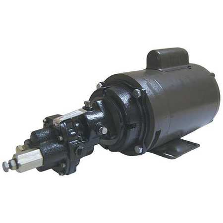 Rotary Gear Pump,  Cast Iron,  3 HP,  1 Ph