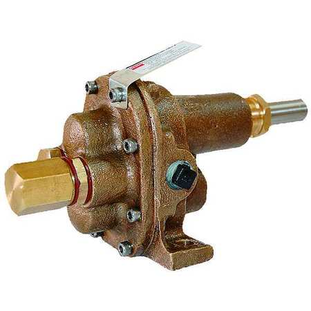 Rotary Gear Pump Head,  1 In.,  1 HP