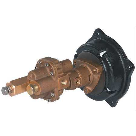 Rotary Gear Pump Head,  3/4 In.,  1 1/2 HP