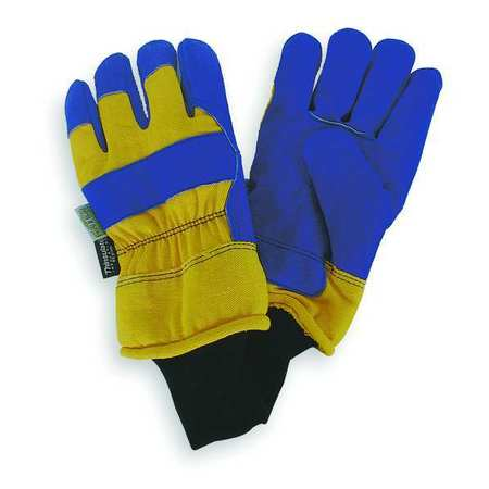 Cold Protection Gloves, L, Blue/Yellow, PR