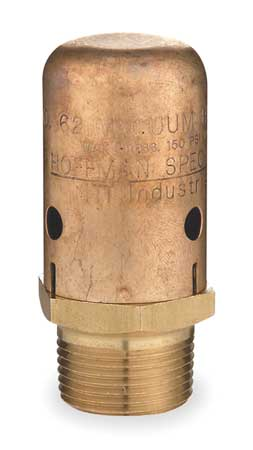 Vacuum Breaker, 3/4 In, MNPT, Brass, 150 psi