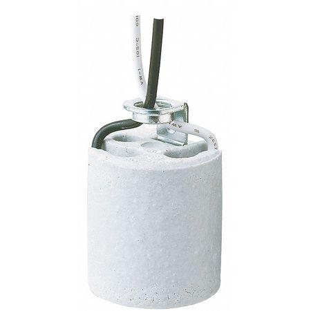Socket W/10 In Leads, Porcelain