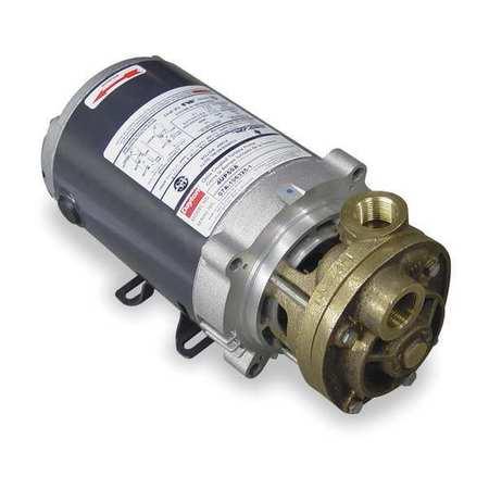 Pump, Turbine, 1/3 HP