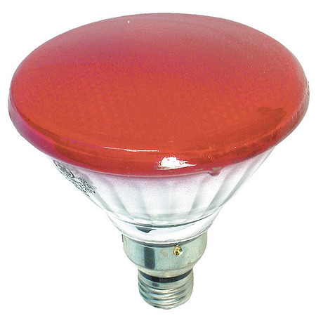 Incandescent Floodlight, PAR38, 85W