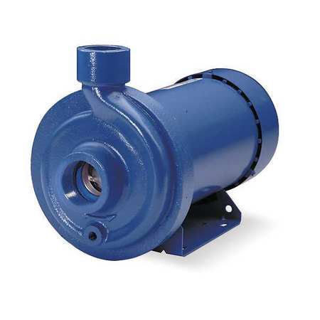 Cast Iron 1 HP Centrifugal Pump 115/230V
