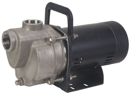 Transfer Pump,  1 HP,  SS