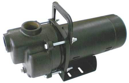 Transfer Pump,  1 HP,  Cast Iron