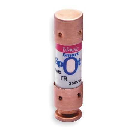 10A Time Delay Polyester Class RK5 Fuse 250VAC/160VDC