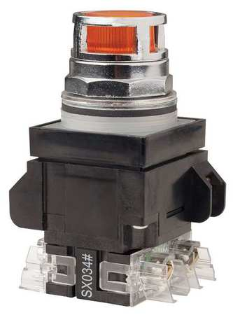 Illuminated Push Button,30mm,1NO/1NC