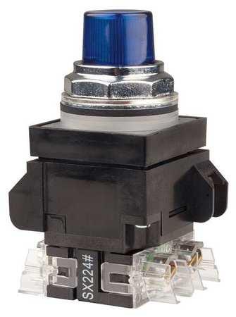 Illuminated Push Button,30mm,Blue