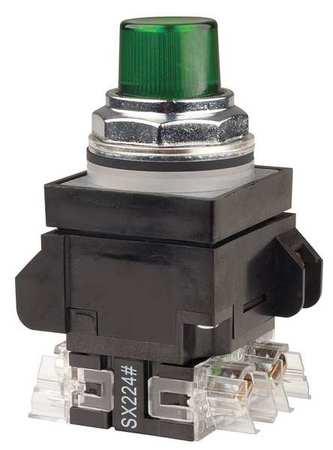 Illuminated Push Button,30mm,120VAC