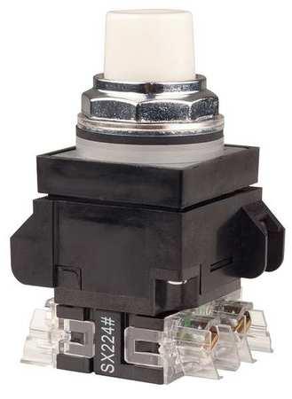 Illuminated Push Button,1NO/1NC,480VAC