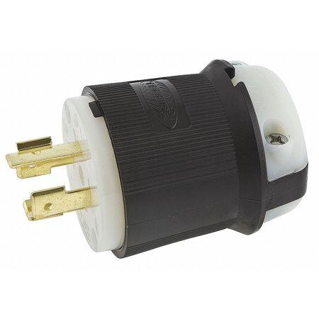 20A Locking Plug 2P 3W 250VAC BK/WT