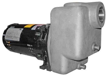 Centrifugal Pump,  3/4 HP,  ODP,  3 Ph