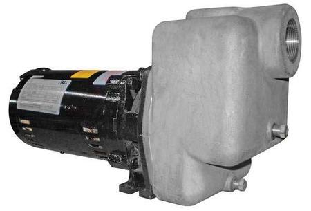 Centrifugal Pump,  1 HP,  ODP,  3 Ph