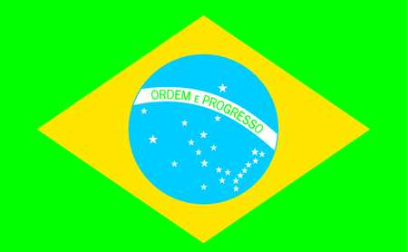 Brazil Flag, 4x6 Ft, Nylon