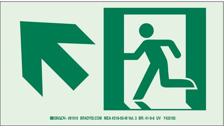 Fire Exit Sign, 7 x 15In, GRN/WHT, SYM, SURF
