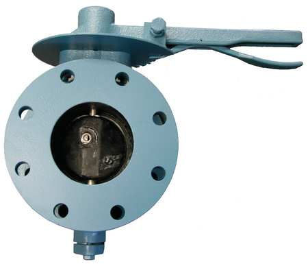Butterfly Valve, Flanged, 10 In, Locking