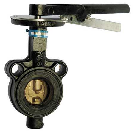 Butterfly Valve, Wafer, Pipe Size 2 1/2 In