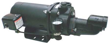 Shallow Well Jet Pump, CI, 1/3HP, 115/230V