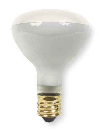 Incandescent Floodlight, R40, 500W